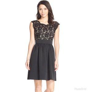 Eliza J Lace & Faille Black Illusion Yoke Dress